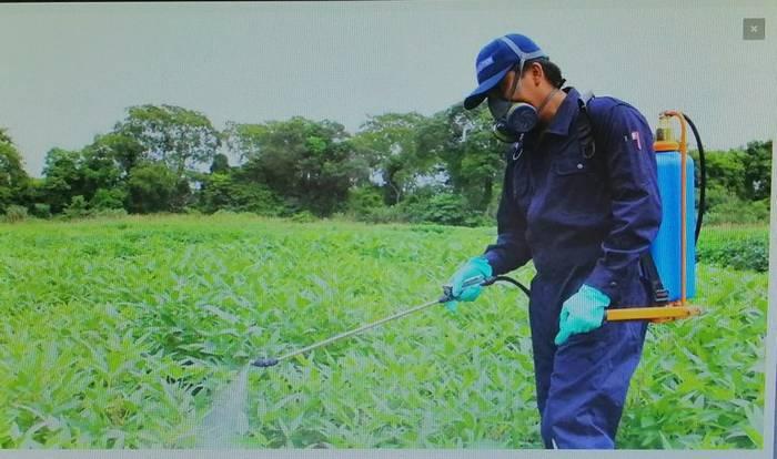 Produktu fitosanitarioei buruzko ikastaroa
