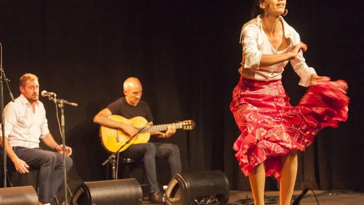 Flamenko ikuskizuneko argazkiak