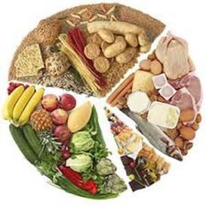 Dieta aholkularitza